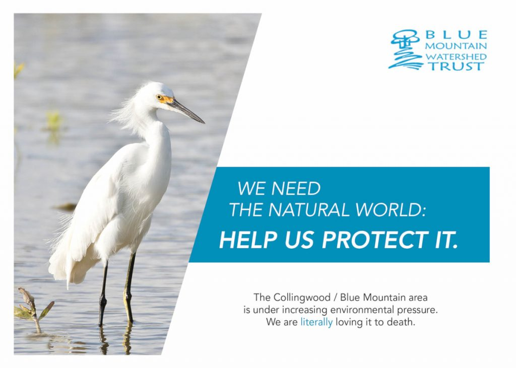 Help us protect the Collingwood / Blue Mountain area